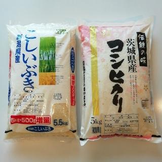 米 コシヒカリ  こしいぶき  5kg ×2