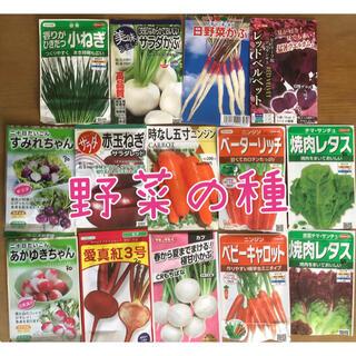 野菜の種セット 6種類+1点オマケ(その他)