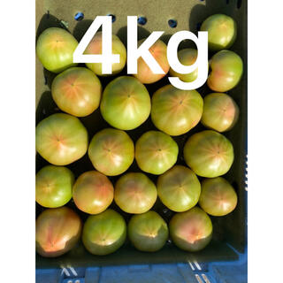 わけありトマト4キロリピ割(野菜)