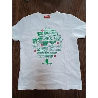 Levi's - Levi's RED TAB サイズM Tシャツ