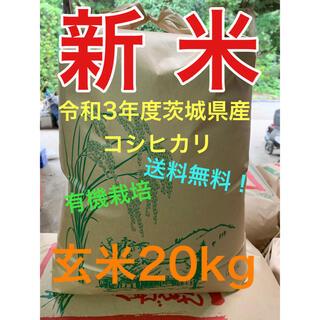 令和3年度 茨城県産 コシヒカリ 玄米20kg 1等米 有機栽培
