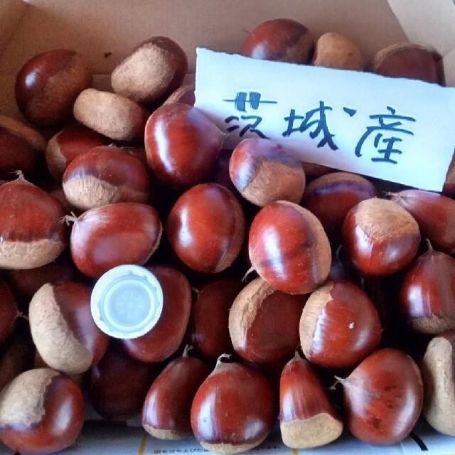 茨城県産 栗 3キロ 無農薬 食品/飲料/酒の食品(野菜)の商品写真