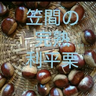 1.3kg 笠間の完熟利平栗☆生栗(野菜)