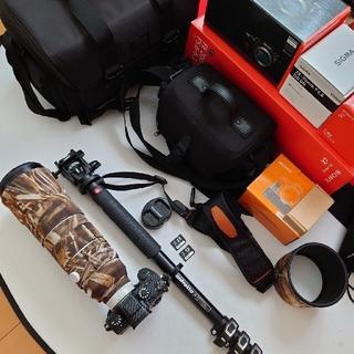 SONY - SONY フルサイズ 野鳥撮影 カワセミ 超お得フルセット
