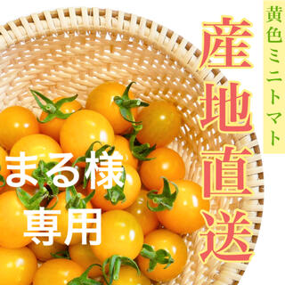イエローミミ3kg まる様専用(野菜)