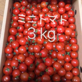ミニトマト 3kg