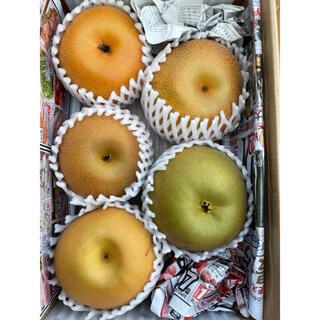 茨城県産 梨 あきづき3×新高1×甘太1  1.9キロ 食べ比べセット