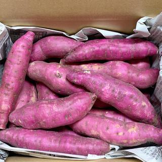 農家直送 さつまいも 紅はるか 2.5キロ(野菜)