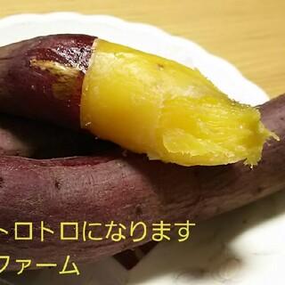 サツマイモ 紅はるか家庭用Sサイズ茨城県箱込20㌔土付き減農薬栽培安納芋以上甘さ(野菜)