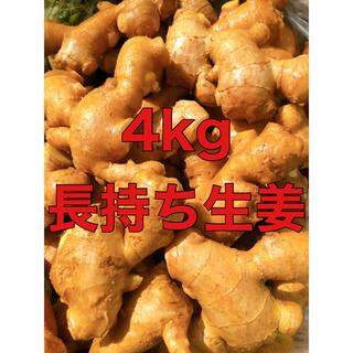 減農薬栽培 九州産親生姜4kg(野菜)