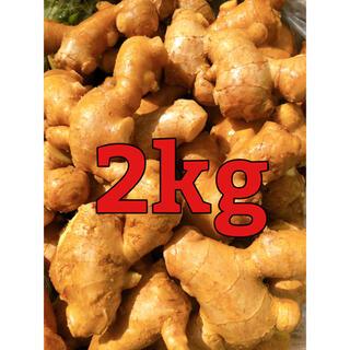 減農薬栽培 九州産親生姜2kg(野菜)