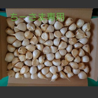 【専用】青森県産バラにんにく1.8kg(野菜)