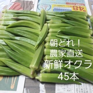 【無農薬】オクラ45本 ポスト投函(野菜)