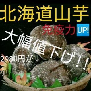 北海道産山の芋秀品1キロ(山芋)(野菜)