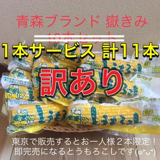 訳あり 青森ブランド 嶽きみ とうもろこし 真空 10本 おやつ 保存食 特産品(野菜)