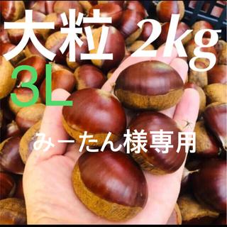 【みーたん様専用】栗2kg 3L(野菜)