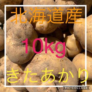 北海道産訳ありじゃがいも キタアカリ10kg(野菜)