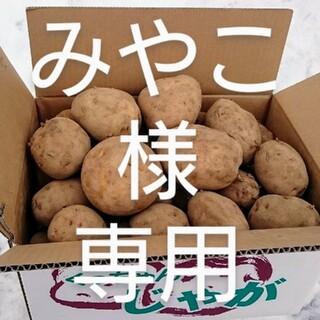 北海道産 じゃが芋きたかむい・かぼちゃ 規格外品20キロ(野菜)