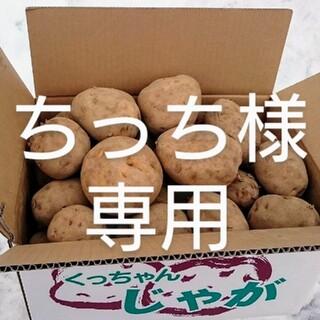 北海道産 じゃが芋・玉ねぎセット 規格外品20キロ(野菜)