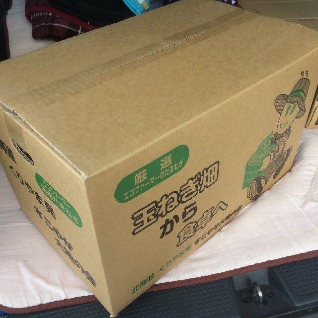北海道産玉ねぎ Mサイズ 20kg 食品/飲料/酒の食品(野菜)の商品写真