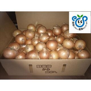 北海道産玉ねぎ Lサイズ10kg(野菜)