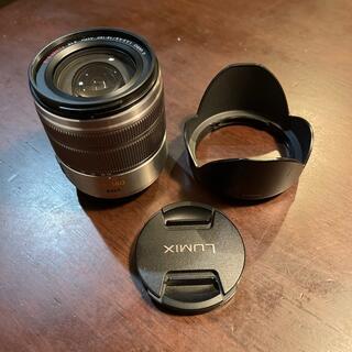 Panasonic - LUMIX  ルミックス G VARIO 14-140mm
