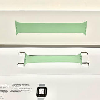 Apple - Apple Watch バンド ピスタチオ ソロループ