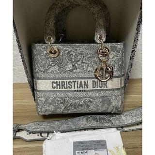 クリスチャンディオール(Christian Dior)のDior ディオール レディディオール ハンドバッ(ショルダーバッグ)