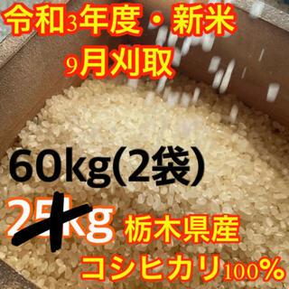 【R3年度新米・玄米60kg】栃木県の指定優良農地で採れたブランド米コシヒカリ