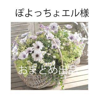UNRELISH - 定価11,880円【新品】アンレリッシュ★ロングニットワンピ×カーディガン
