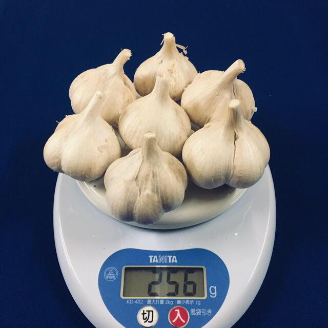青森県 にんにく 福地ホワイト六片 500g 食品/飲料/酒の食品(野菜)の商品写真