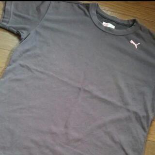 プーマ(PUMA)の✽こかひさま✽ PUMA   Tシャツ(Tシャツ(半袖/袖なし))