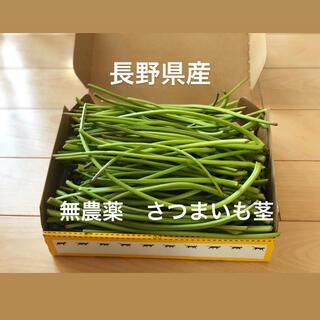 長野県産 無農薬 さつまいも茎 1キロ(野菜)