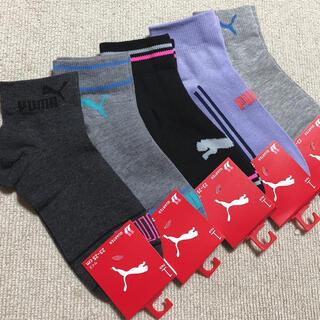 プーマ(PUMA)のプーマ 靴下セット(ソックス)
