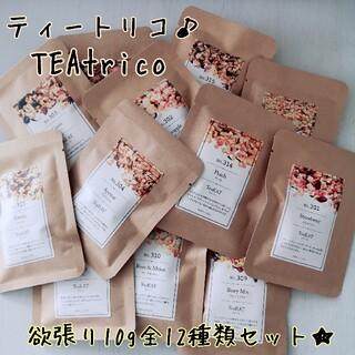 TEAtrico ティートリコ 食べれるお茶 10gサイズ 全12種類セット(茶)
