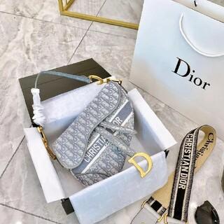 ディオール(Dior)のdiorグレーハンドバッグ(化粧水/ローション)