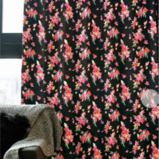 レディー(Rady)のカーテン 100×200 新品未使用(カーテン)