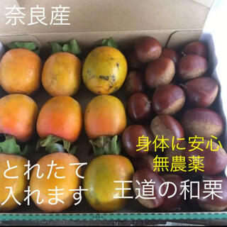 とれたて無農薬の和栗500gと柿9個(フルーツ)