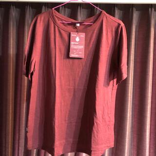 THE NORTH FACE - アイスブレーカー  tシャツ レディースM