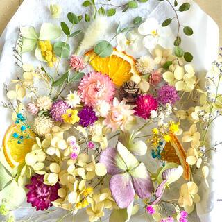 ドライフラワー花材セットNo.267⁑カラフルバラエティー(ドライフラワー)