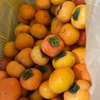 種無し 刀根柿 4.5kg 訳あり 奈良県西吉野農家直送 家庭用 お試し 渋抜き