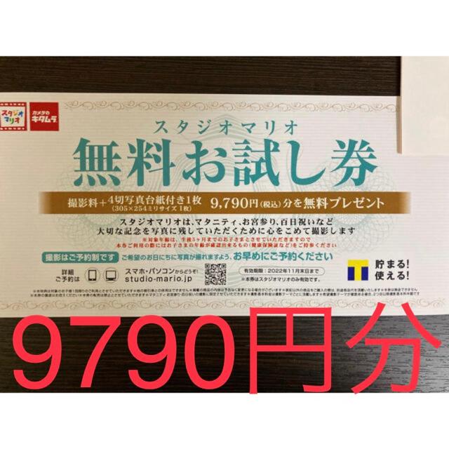 Kitamura(キタムラ)の【スタジオマリオ】無料お試し券 チケットの優待券/割引券(その他)の商品写真