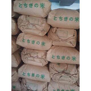 ◇農家直送 栃木県産 新米 コシヒカリ 玄米 10kg