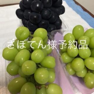 [さぼてん様予約品] 長野県産 シャインマスカット&ナガノパープル&藤稔 2kg(フルーツ)