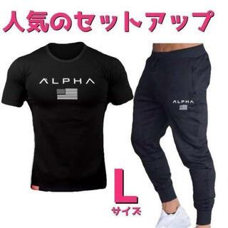 Tシャツ×スウェットジョガーパンツ セットアップ メンズジムウェアLサイズ黒×黒