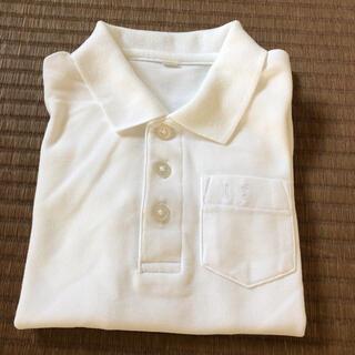 白 ポロシャツ 幼稚園 保育園 制服 110