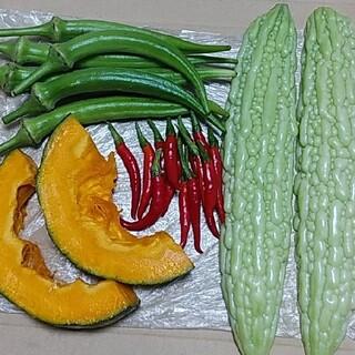 ポストへお届け【数量限定】お野菜詰め合わせ(野菜)