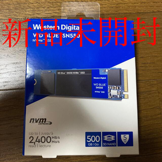 M.2 SSD WDS500G2B0C