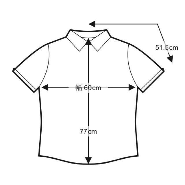 BEAMS(ビームス)のRay BEAMS FRED PERRY × Ray BEAMS 別注 シャツ メンズのトップス(ポロシャツ)の商品写真