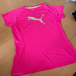 プーマ(PUMA)のプーマ tシャツ(Tシャツ(半袖/袖なし))